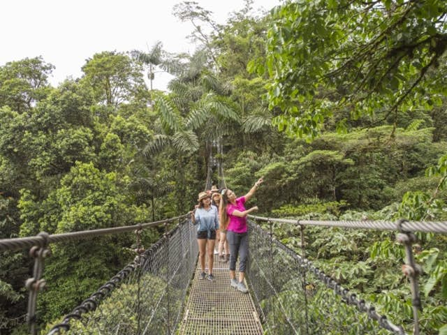Forest Canopy: Heaven on Earth at Mistico Park
