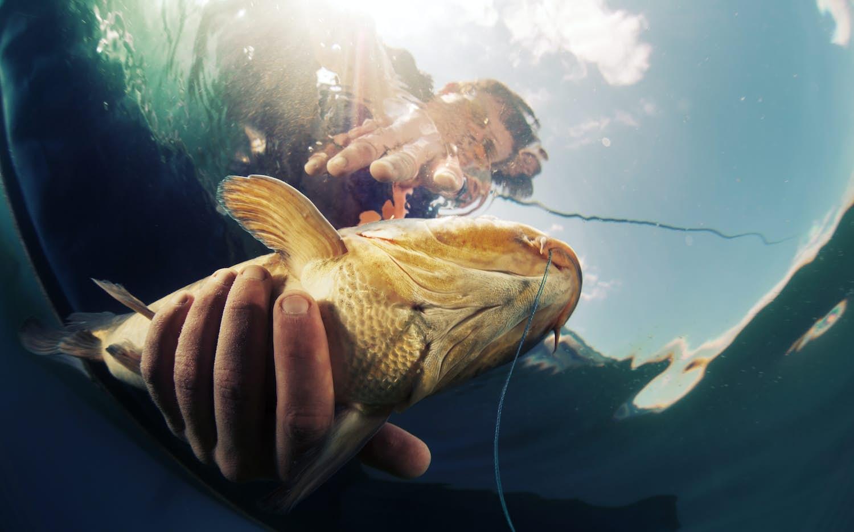 Arenal Sport Fishing Tours