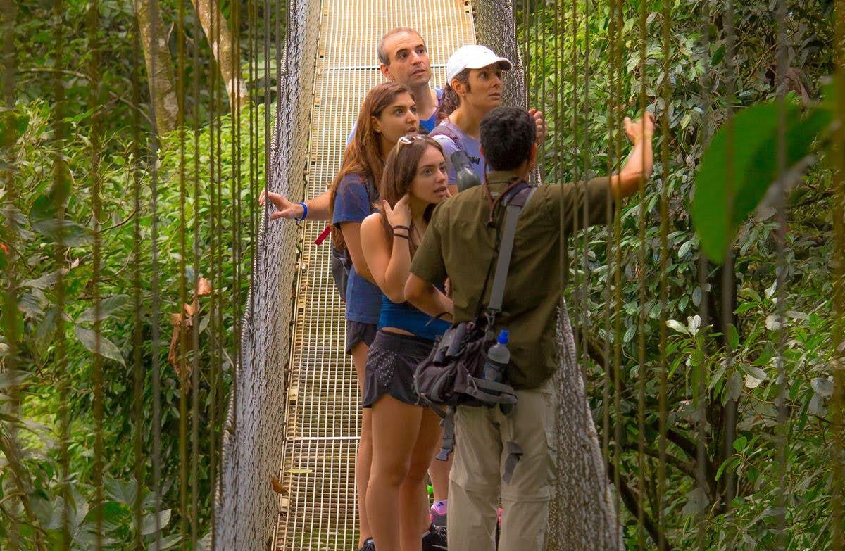 Mistico Hanging Bridges Hike