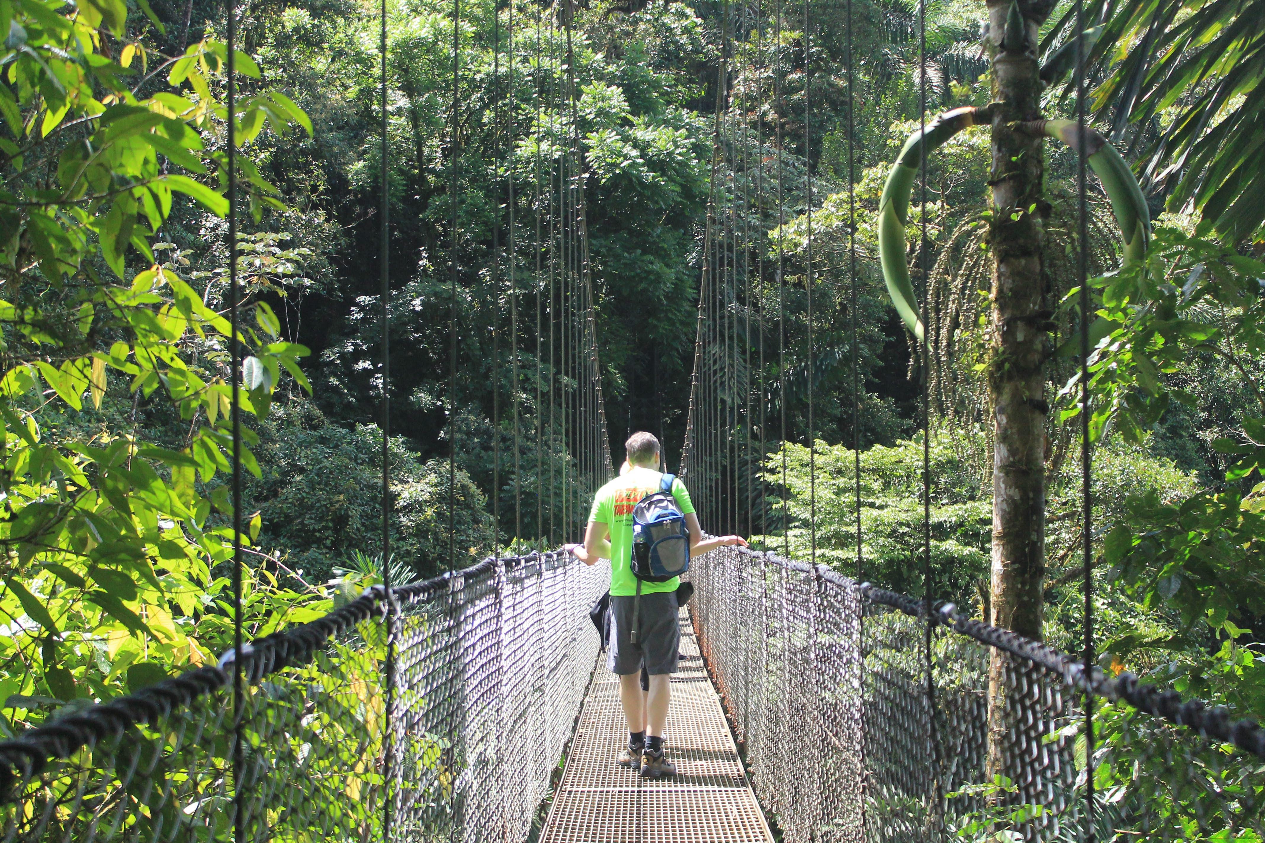 Visitor Hiking at Hanging Bridges.