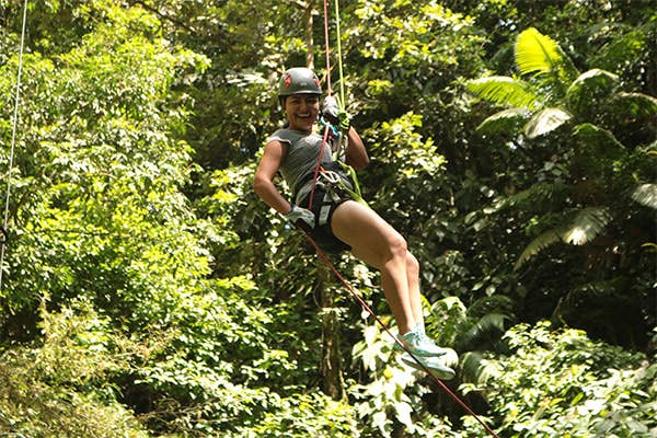 Ziplining in the forest.