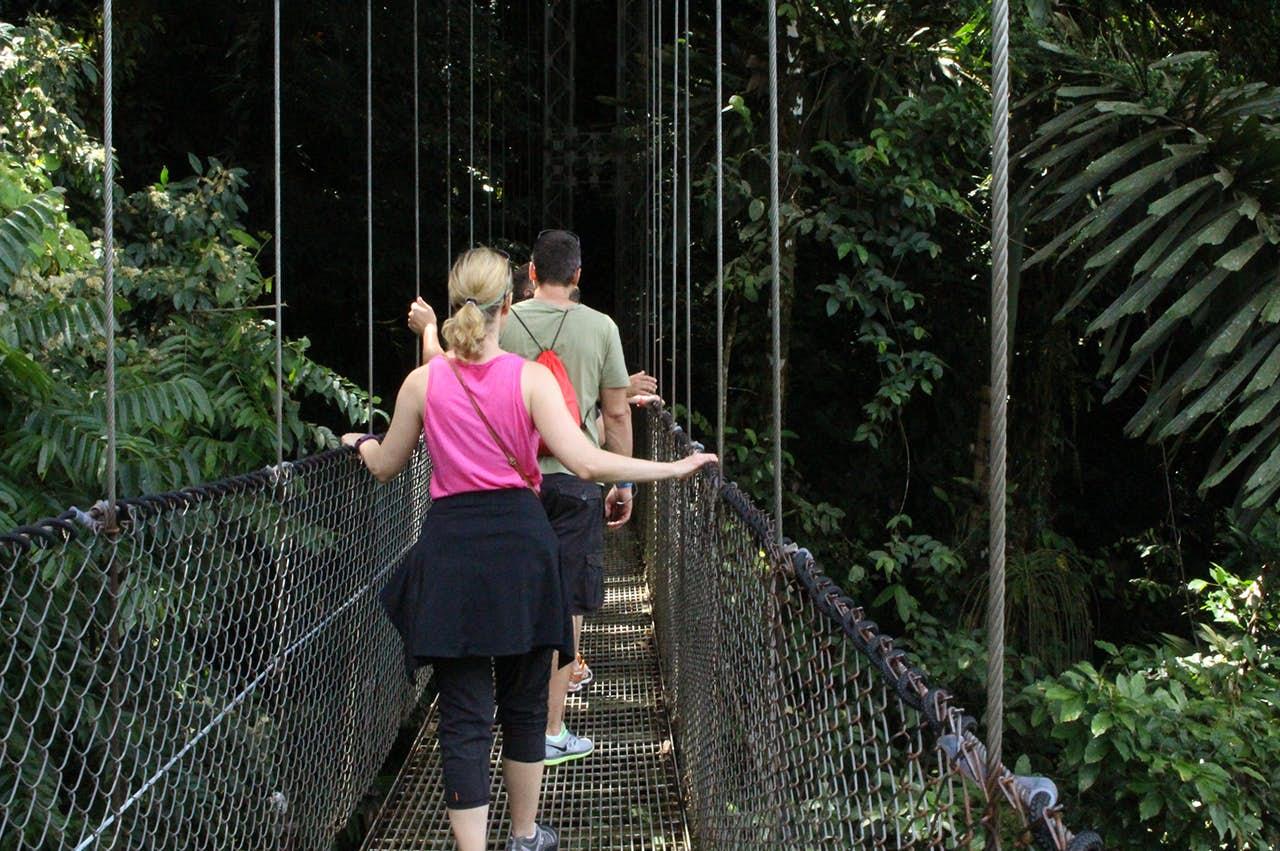 Costa Rica visitors hiking on hanging bridges.