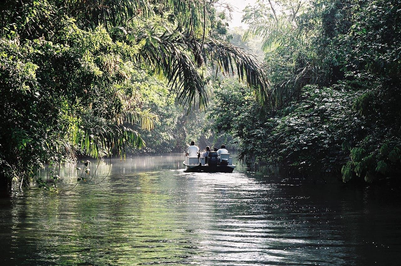 Tortuguero canals in Costa Rica.