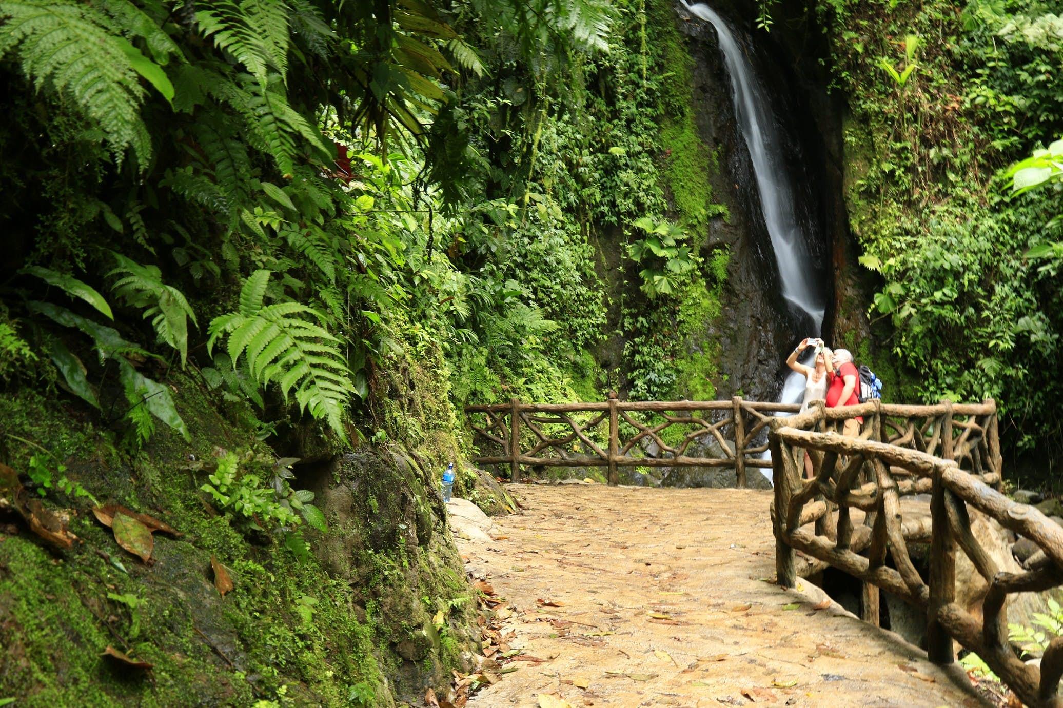 Mistico Waterfall