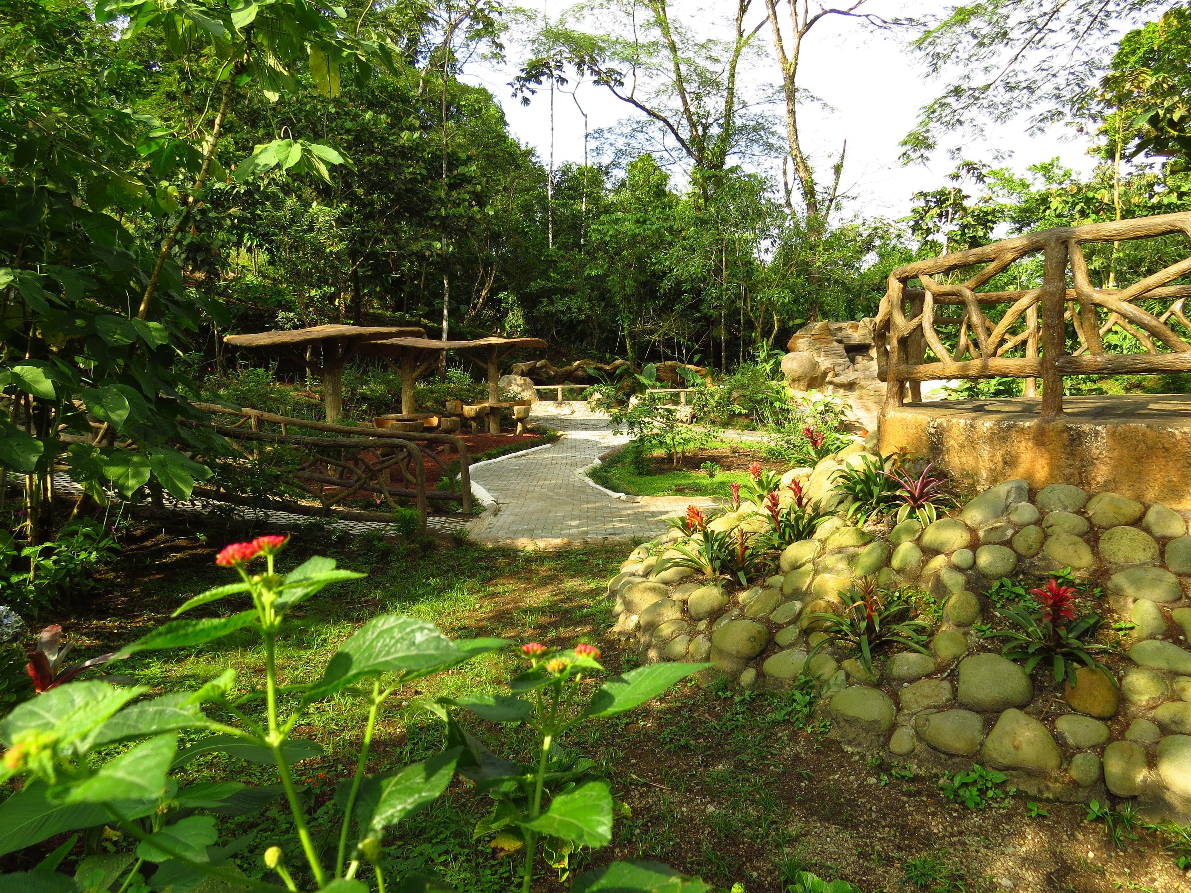 Rufus Garden Mistico Park